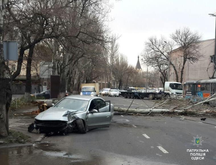 Пьяное ДТП на Пересыпи: упавшее дерево перекрыло дорогу