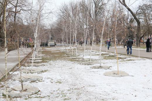 В этом году планируют озеленить Прохоровский сквер