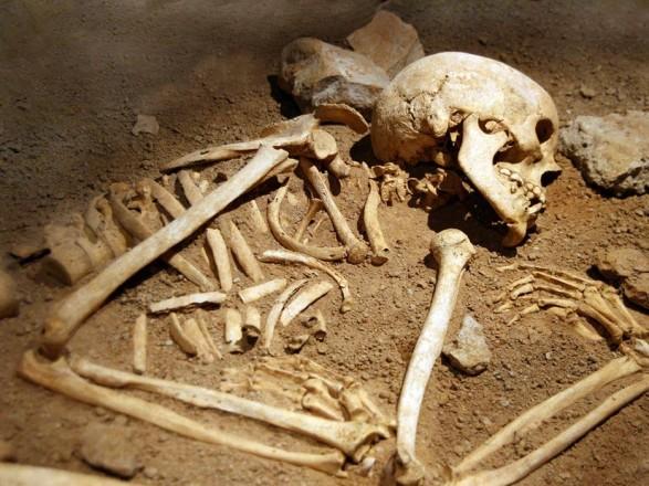 На свалке в Белгород-Днестровском районе обнаружили человеческие останки