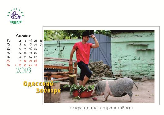 Одесский зоопарк выпустил необычный календарь
