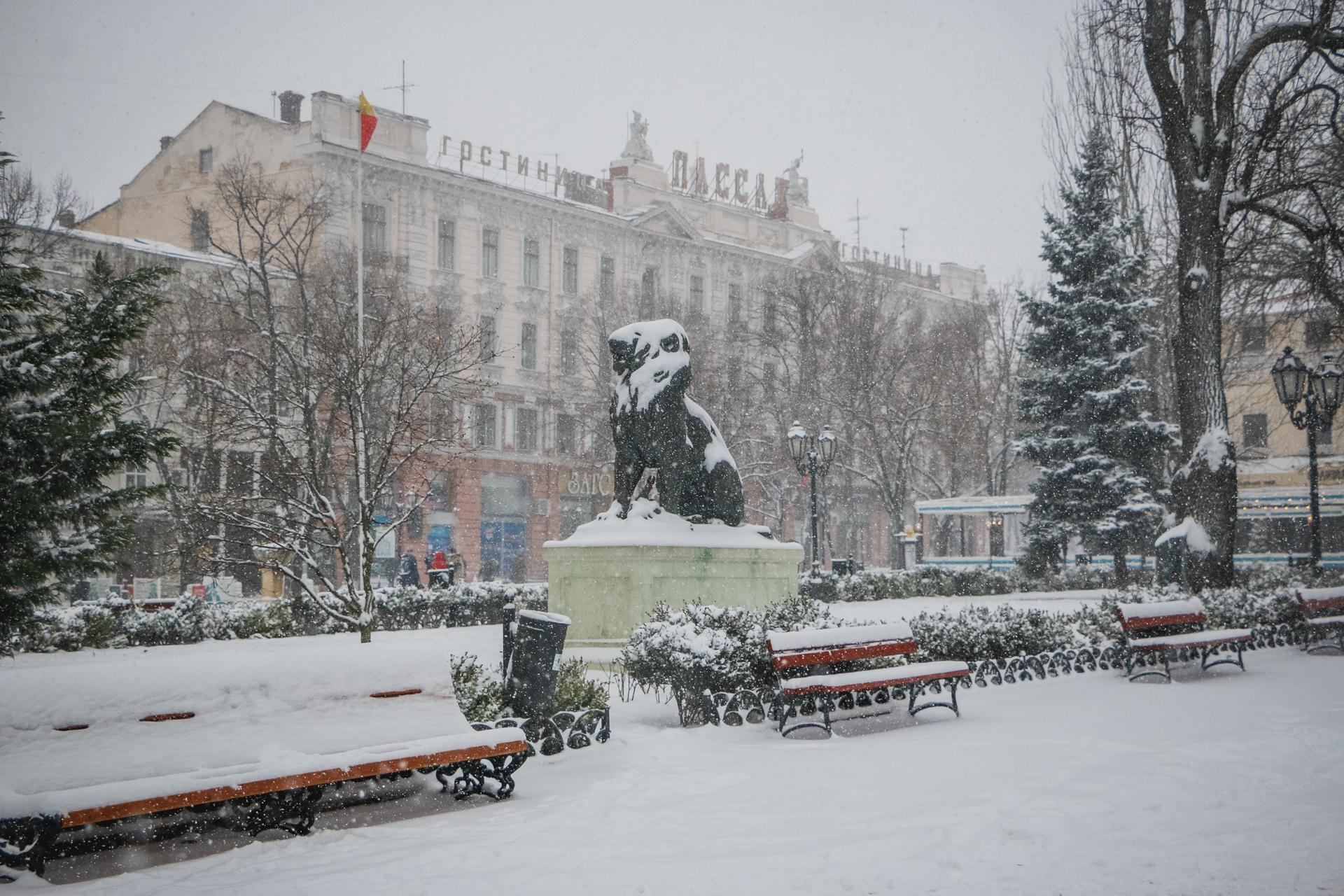 Снежный город: фоторепортаж