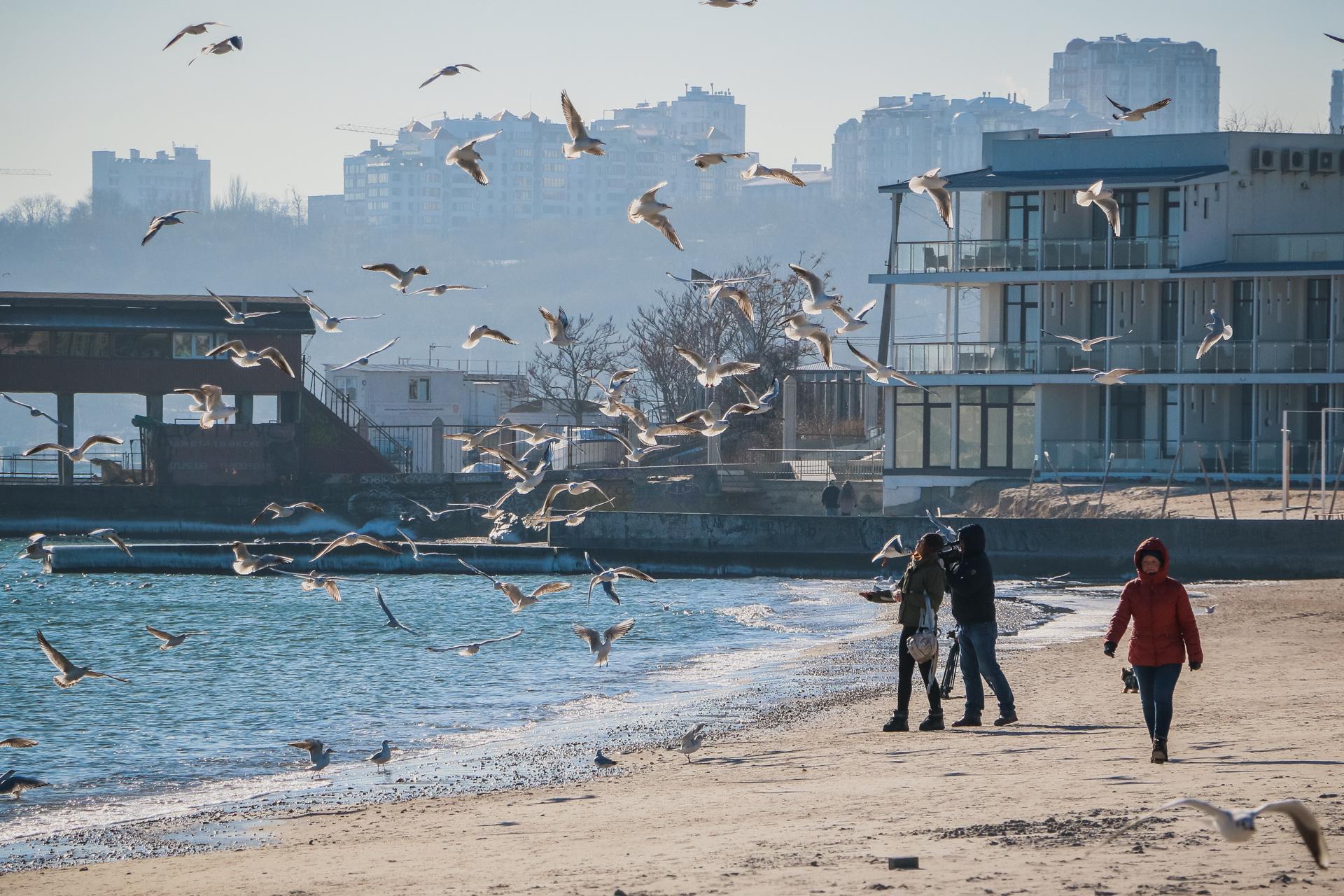 Январь, Одесса, море…(фоторепортаж)