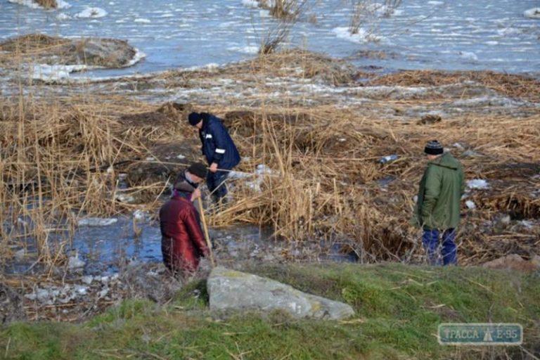 На юге Одесской области местные жители собирают дохлую рыбу на озере
