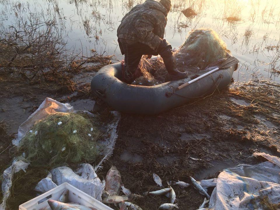 В Одесской области задержали браконьеров с уловом на 300 тысяч гривен