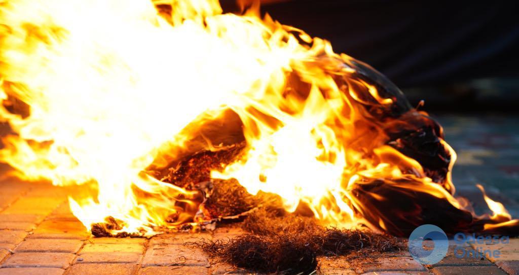 Акция одесской «Самообороны» под консульством России: порубили и сожгли чучело (фото)