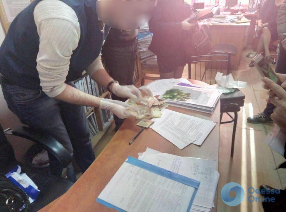 Одесского налоговика поймали на взятке