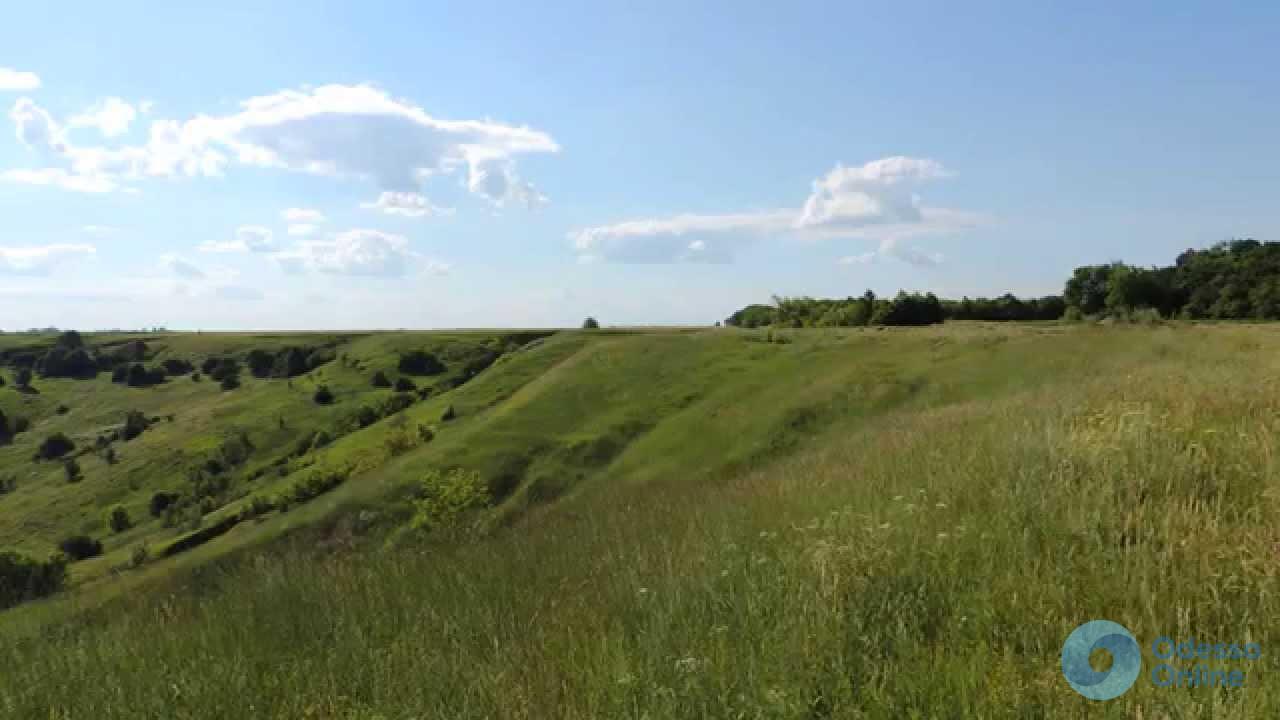 В Одесской области 23 гектара «найденной» земли продадут на аукционе