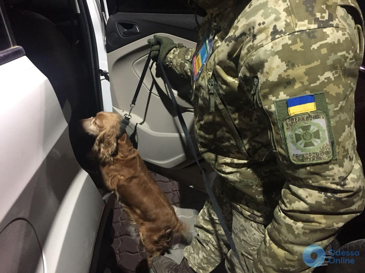 Одесса: в машине из Нью-Йорка нашли патроны