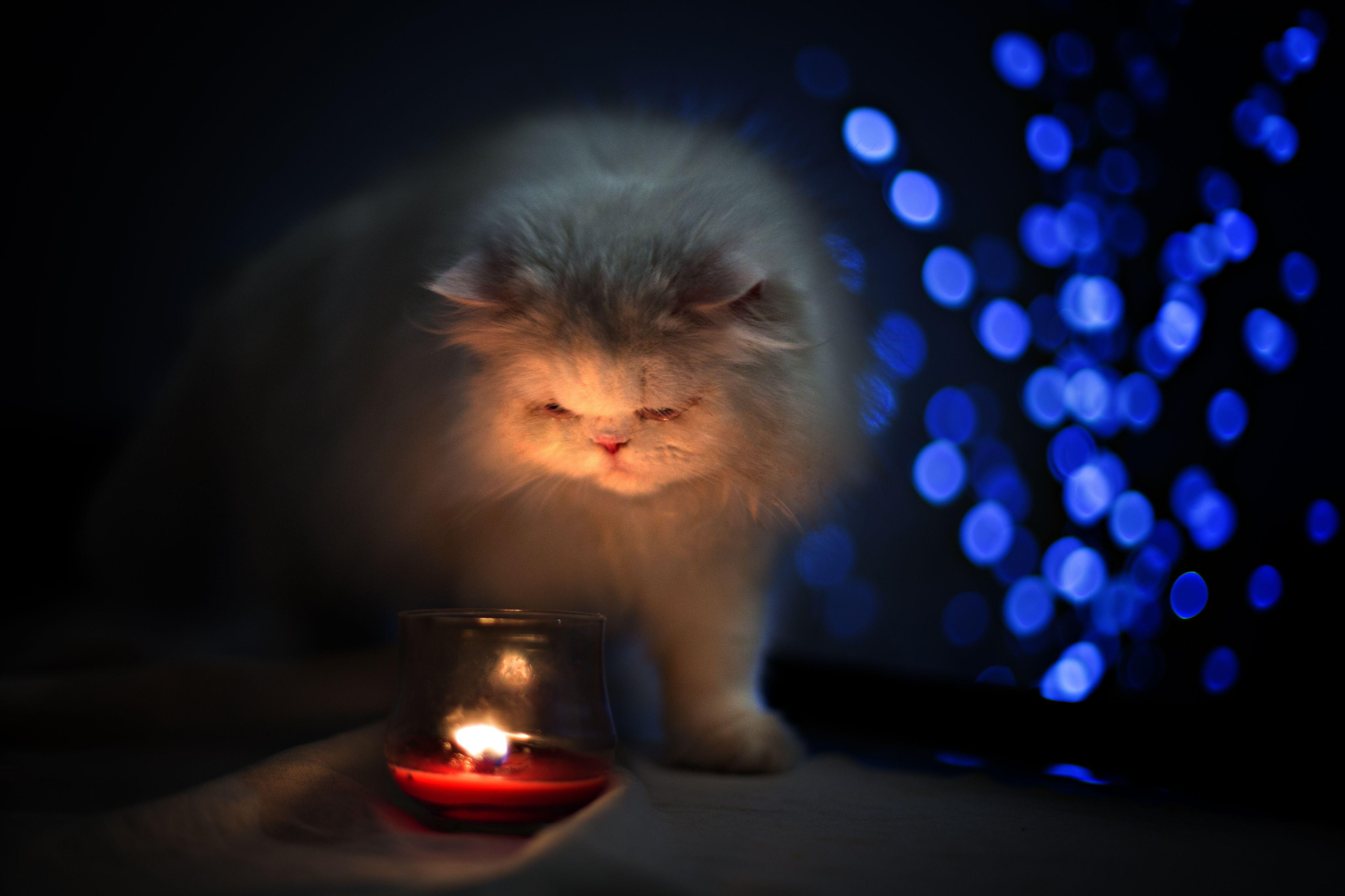 Завтра в некоторых домах Одессы отключат свет