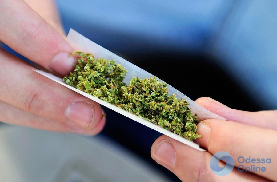 В Одесской области иностранец пытался вывести за границу марихуану