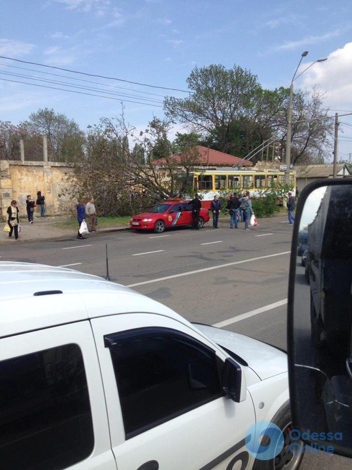 В Одессе троллейбус вылетел с дороги и снес дерево