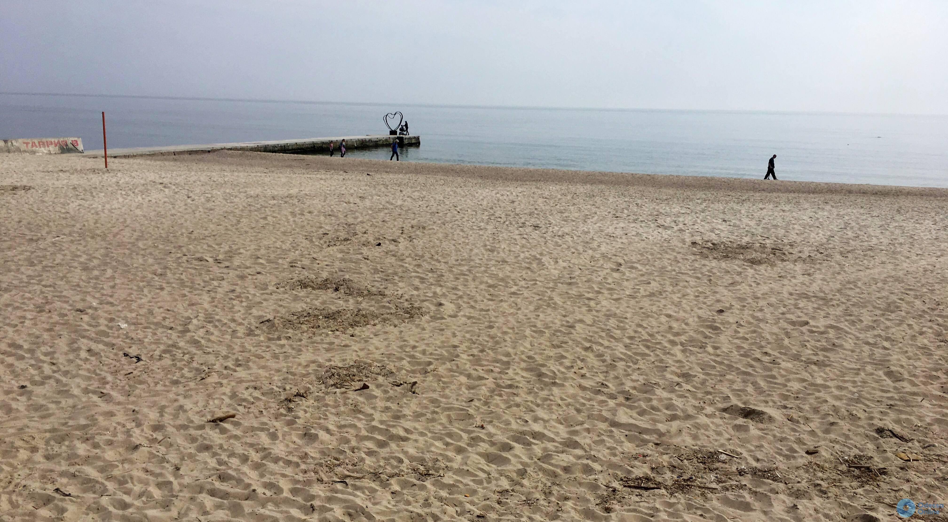 Моржи устроили новогоднее купание в Черноморске