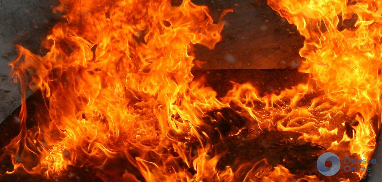 Пожары в Одесской области: спасатели тушили дома