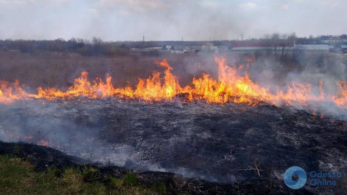 В Одесской области сохраняется чрезвычайная пожарная опасность