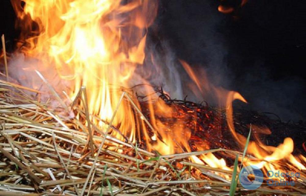 В селе под Одессой пожар уничтожил запасы сена