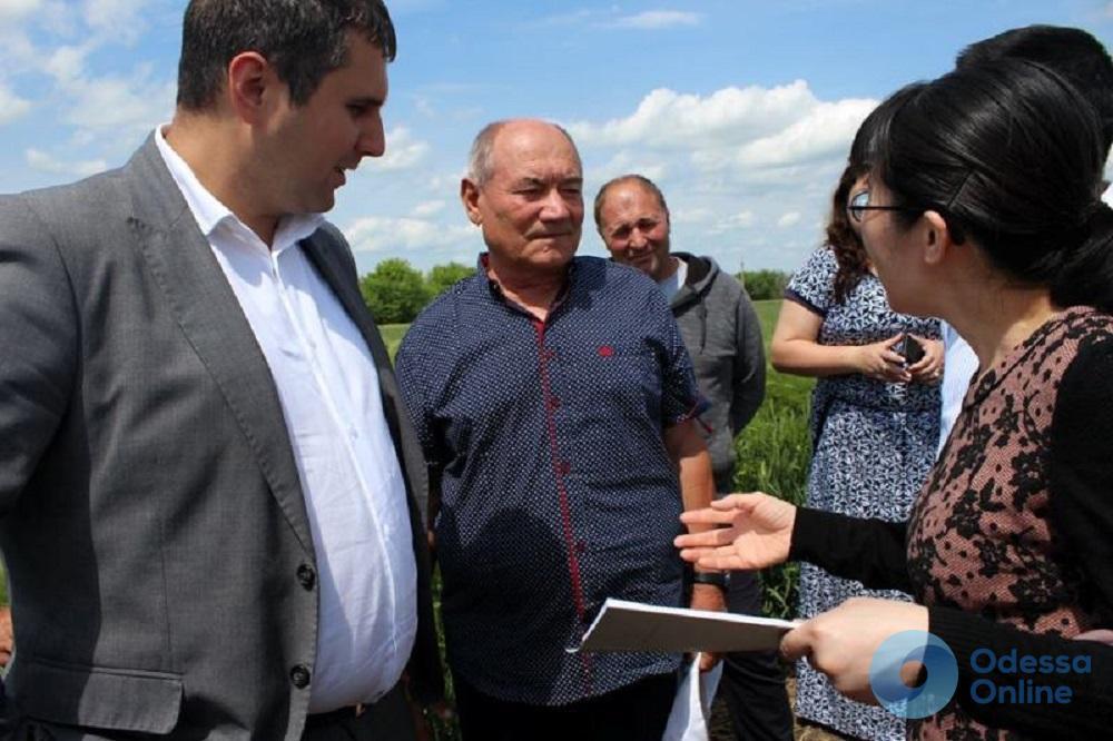 Китайские бизнесмены готовы поднимать один из районов Одесской области