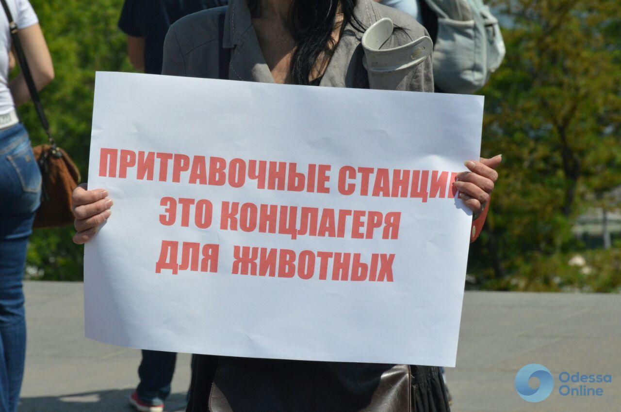 В Одессе прошла всеукраинская акция против притравочных станций