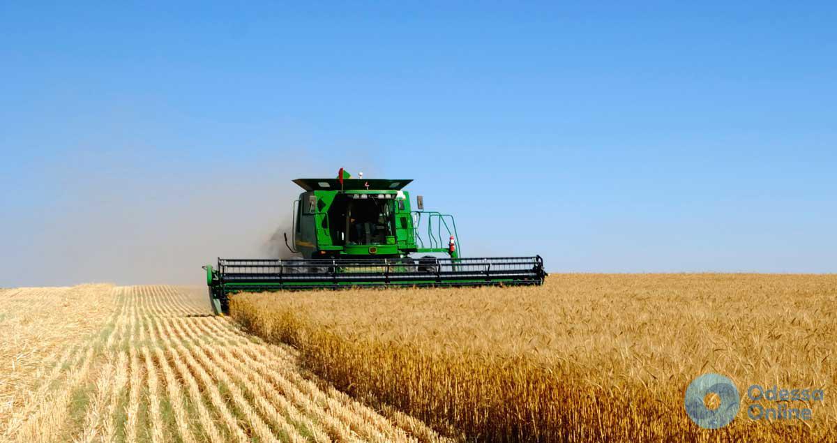 В Одесской области падают объемы производства сельхозпродукции