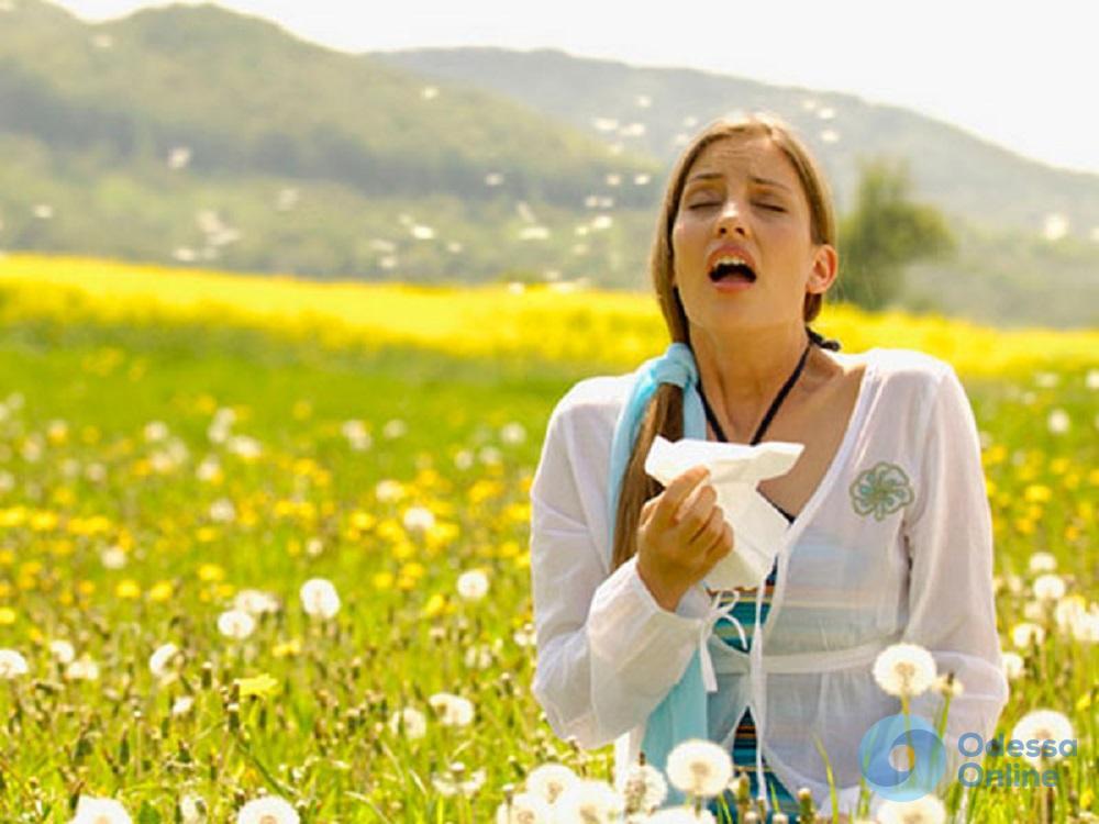 Одесситов призывают самостоятельно бороться с сорняками-аллергенами