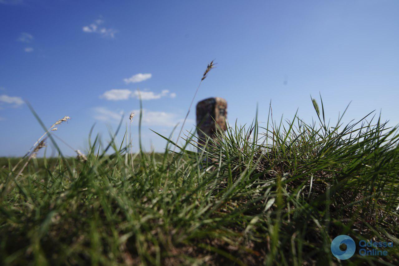 Мистика Жеваховой горы: древнее капище и «дом ведьмы» (фото, видео)