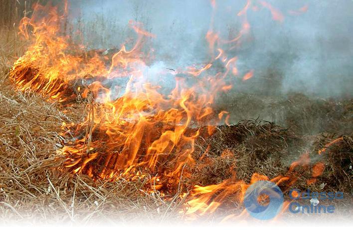 В Одесской области селяне тушили большой пожар на пшеничном поле