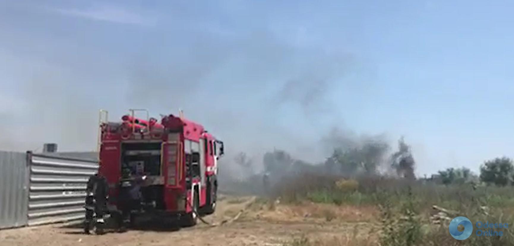 На поселке Котовского горит сухая трава (видео)