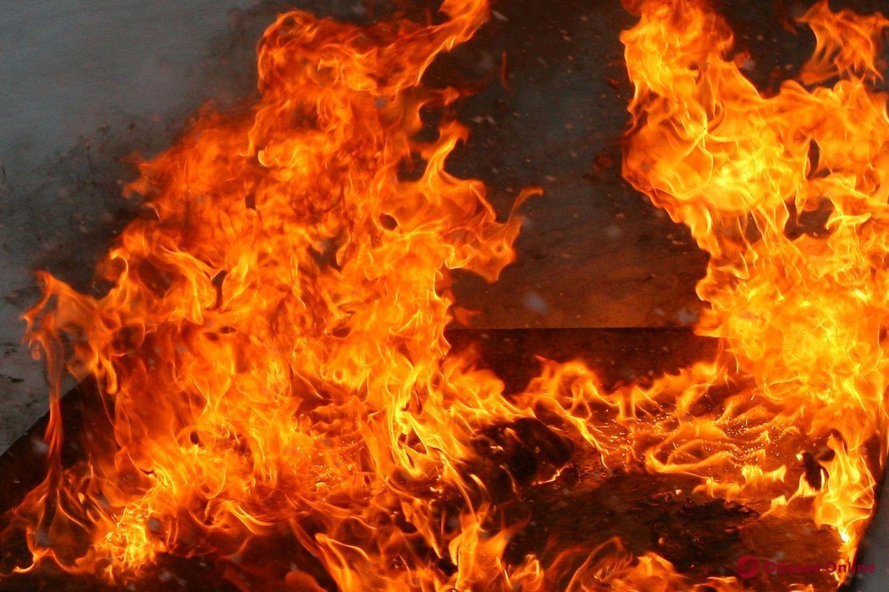 Белгород-Днестровский район: спасатели ликвидировали два пожара