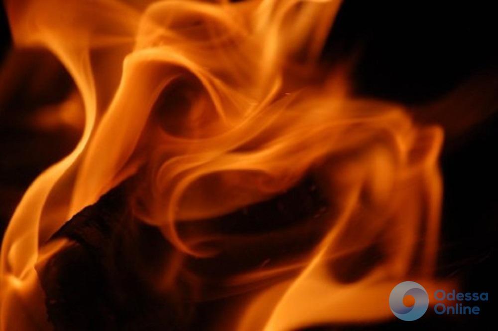Под Одессой огонь уничтожил 100 квадратных метров сухостоя и автомобиль