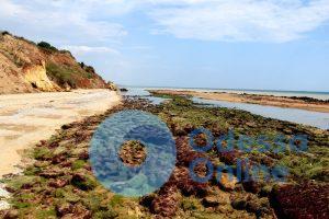 Оползень вблизи Южного: в Черном море образовался новый остров (фото, видео)