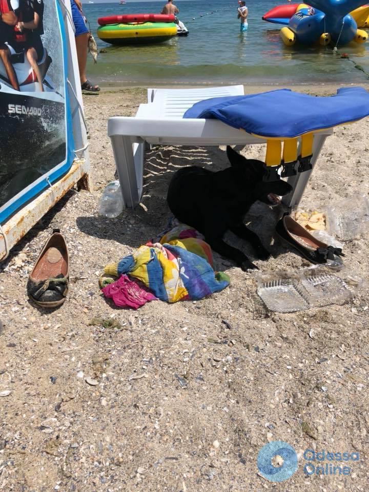 Ушла купаться и не вернулась: в акватории одесского пляжа спасатели ищут пропавшую женщину