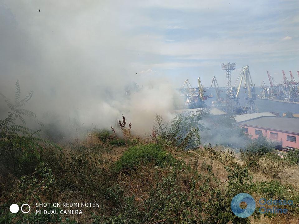 В одесском парке вспыхнул пожар (видео)