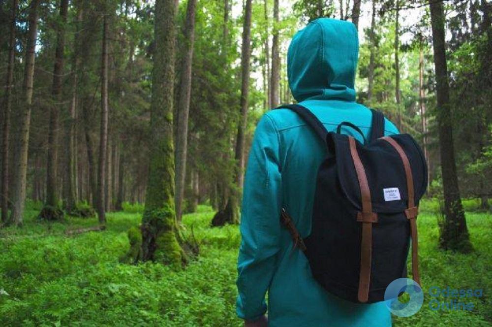 В лесу на Волыни заблудилась 16-летняя одесситка