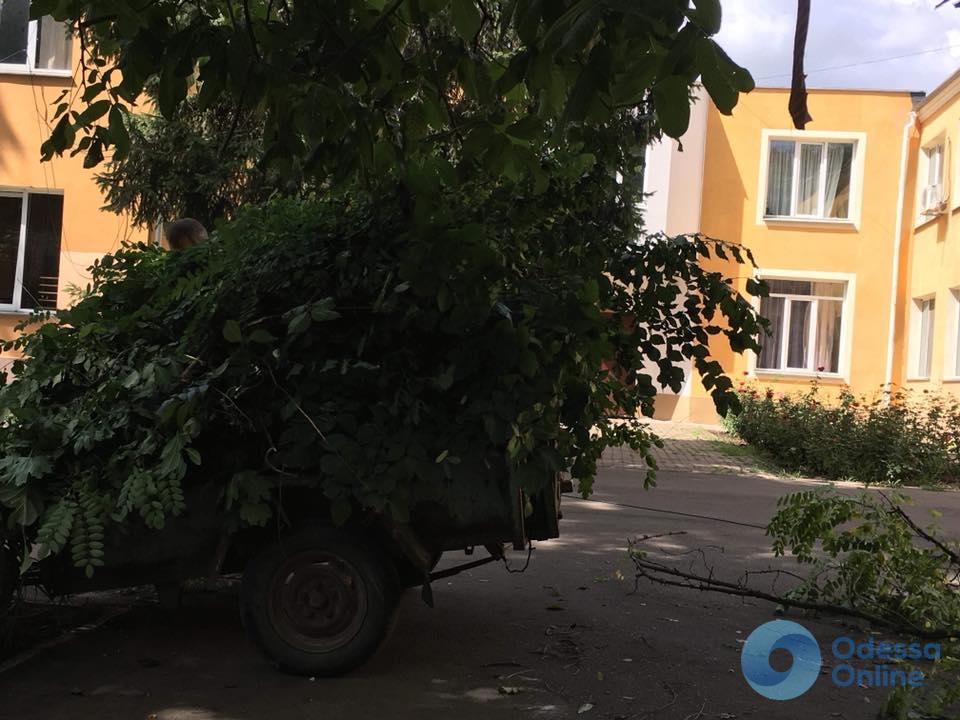 Одесса: в детском приюте «Свитанок» провели субботник