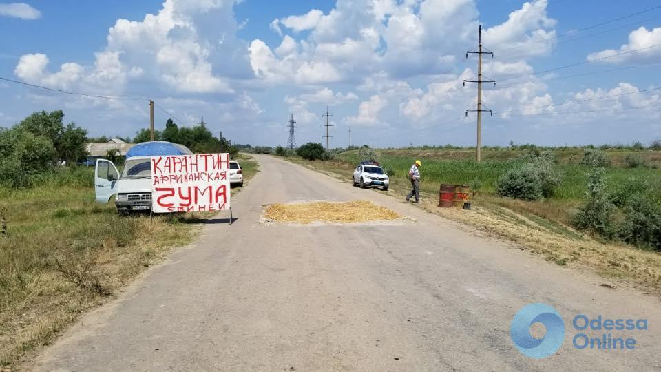Одесская область: в Килию пытались провезти свинину без документов