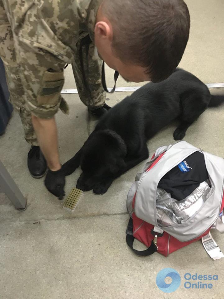 В Одесском аэропорту у иностранца изъяли патроны