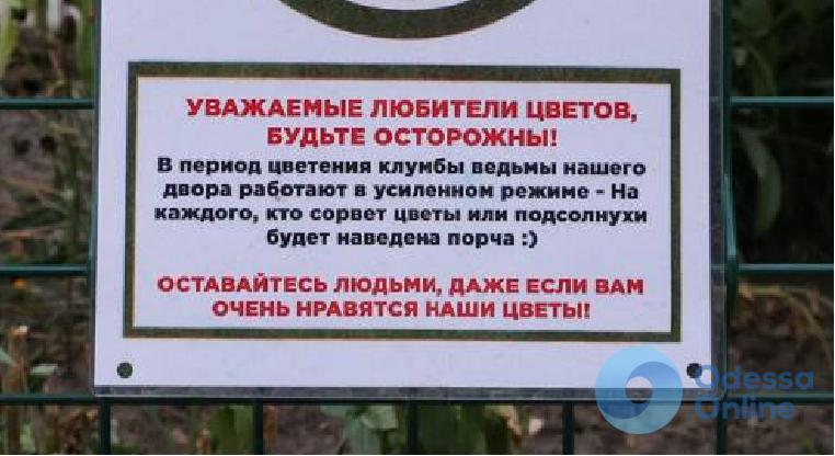 Охраняется ведьмами: на Молдаванке защищают клумбы древним способом (фотофакт)