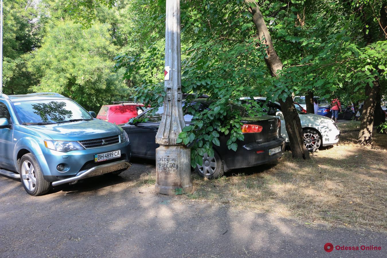 Жаль денег за парковку: в парке Шевченко владельцы авто продолжают «убивать» газоны (фото)
