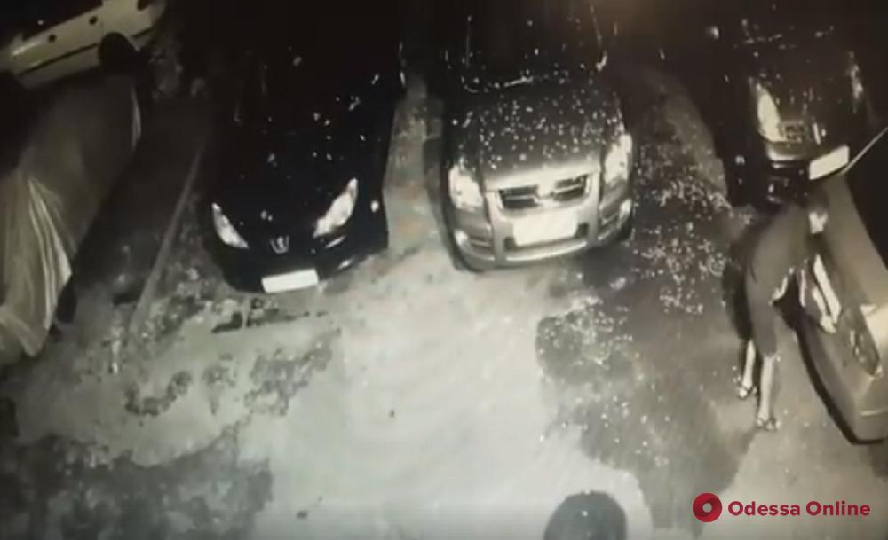 Прятал в водосточной трубе: одесситка разместила в сети видео кражи номеров с машин