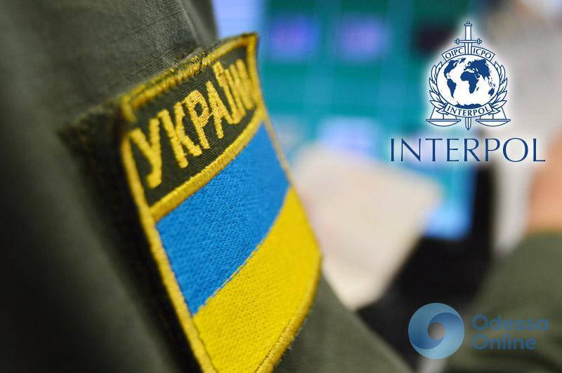 Одесская область: на границе задержали угнанный BMW