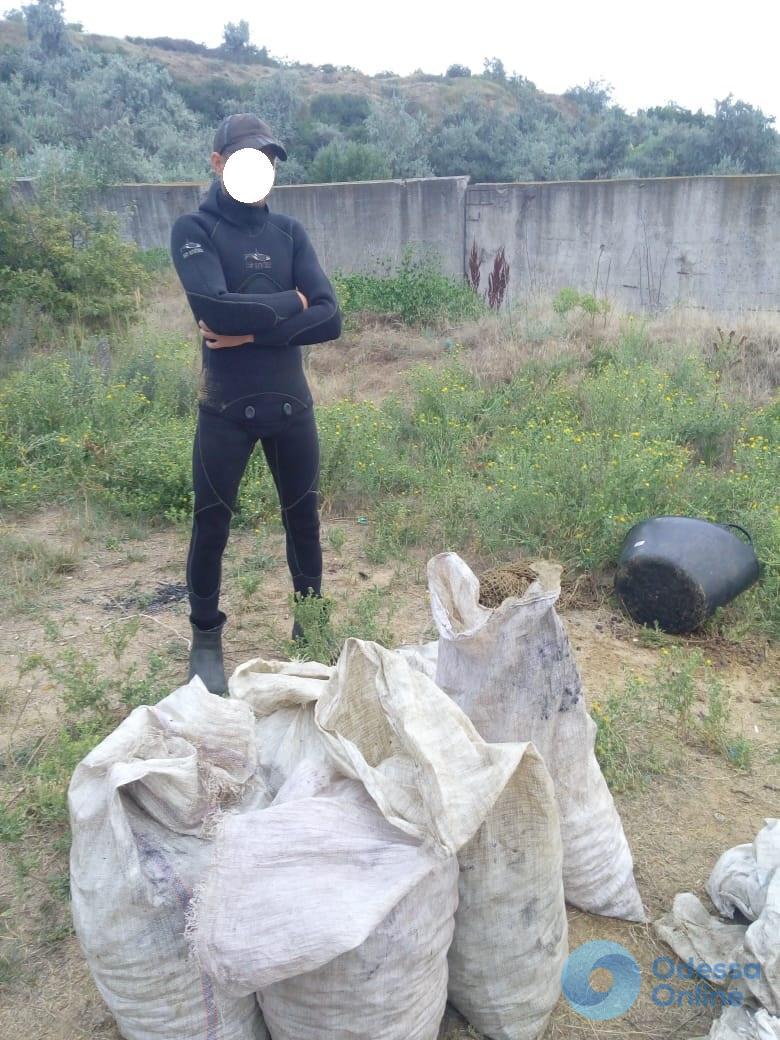 Одесская область: пограничники задержали ловца мидий (видео)