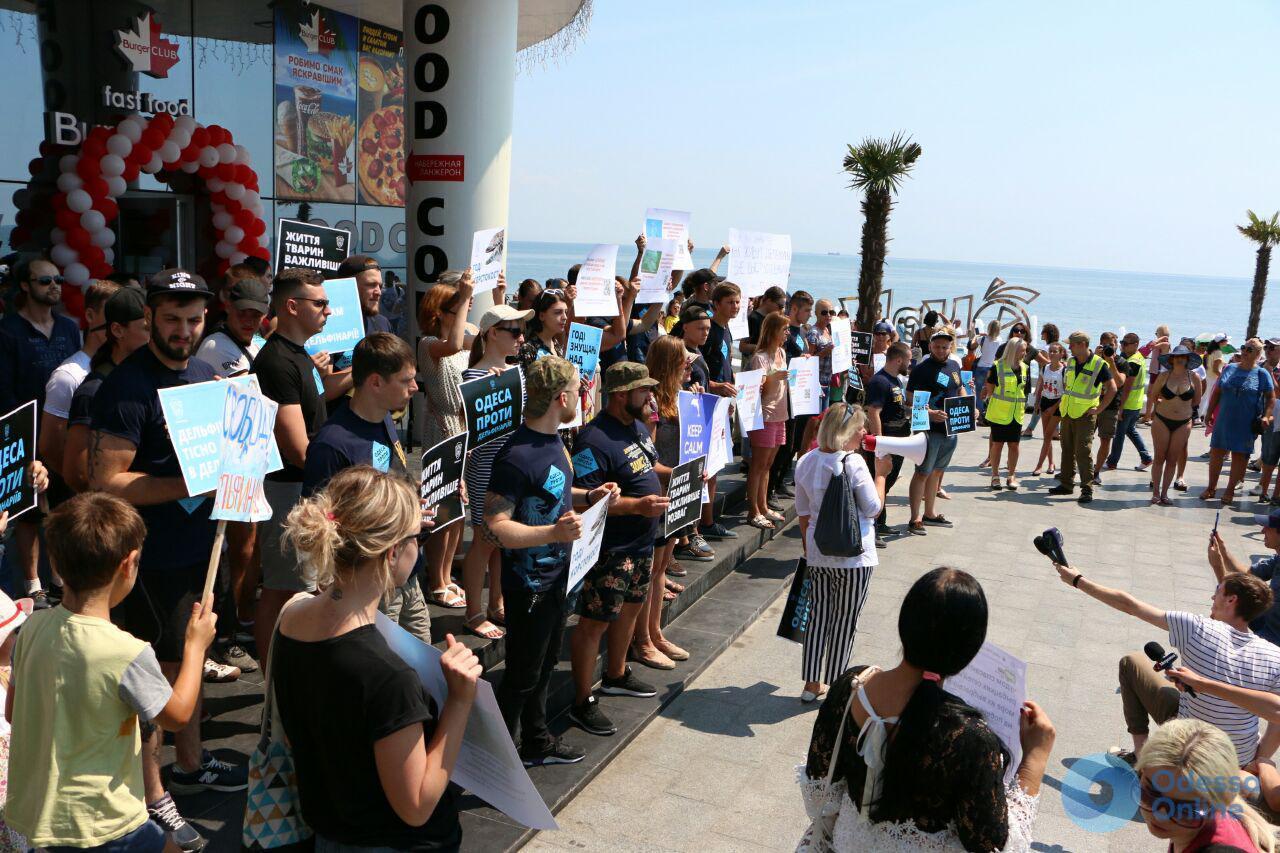 «Хватит жестокости»: в Одессе пикетировали дельфинарий