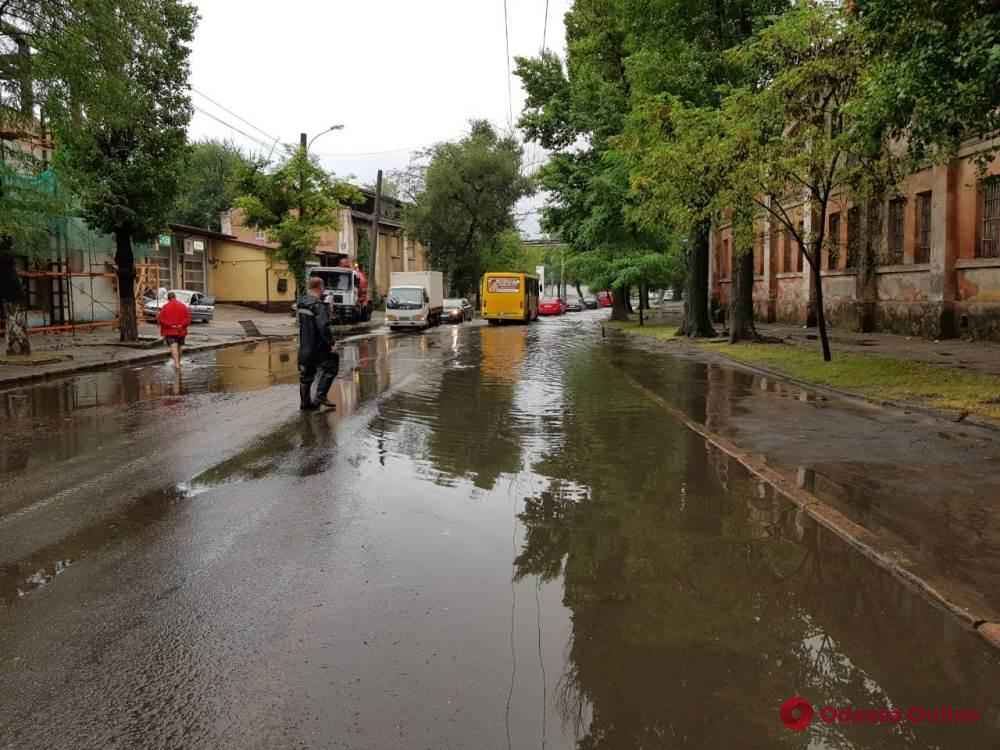 В Одесской области ветер повалил деревья, а ливень подтопил дома