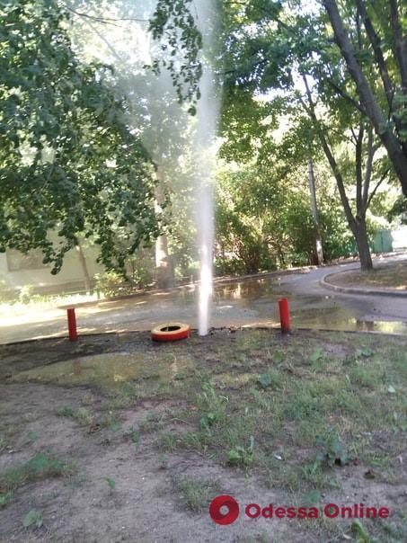 Одесса: в одном из дворов на Черемушках бьет фонтан (фото)