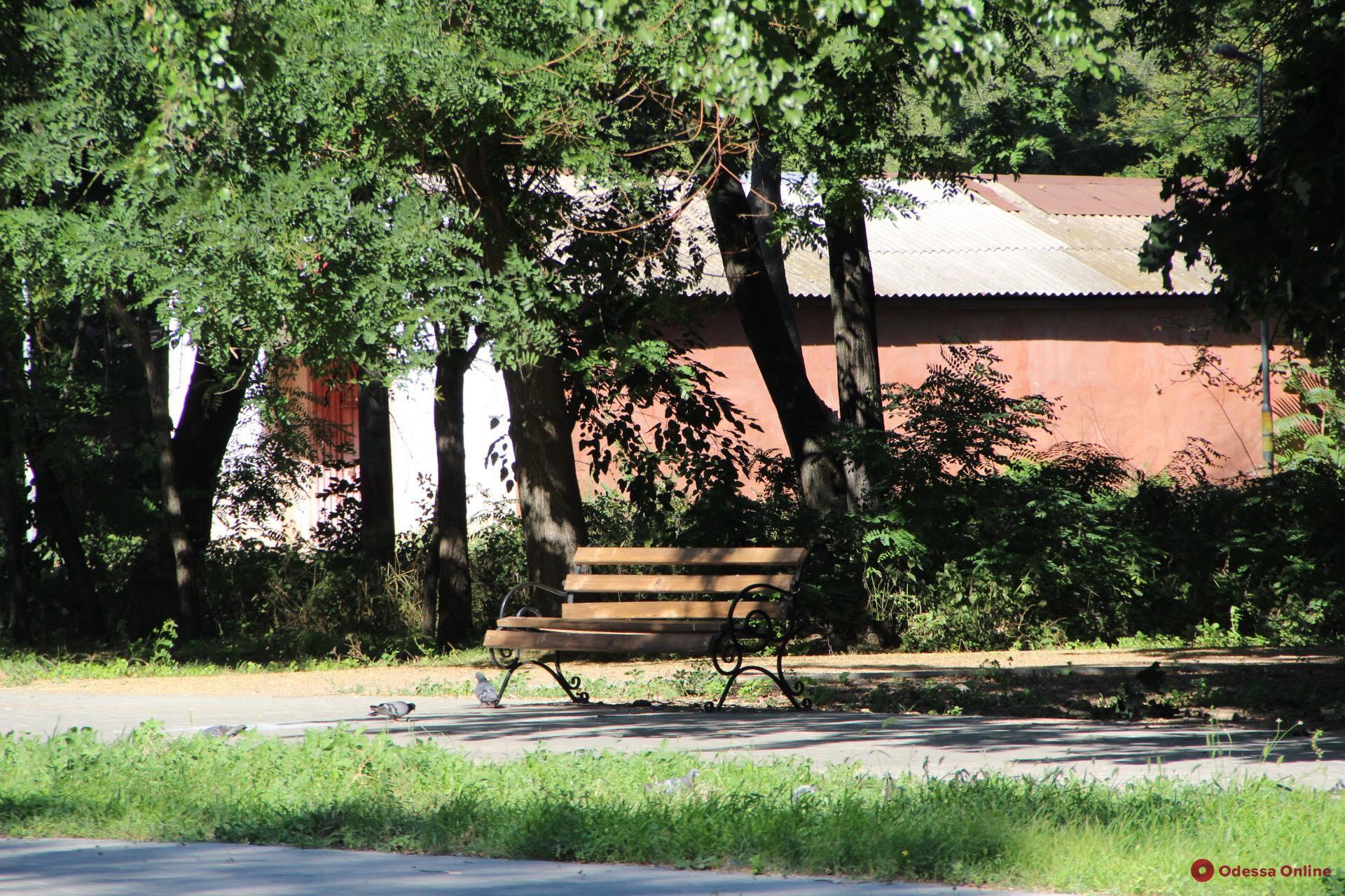 В Преображенский парк вернут скамейки ко Дню города