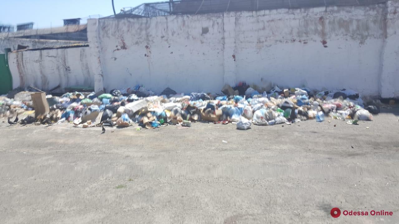 Грибок и мусор: омбудсмен Денисова проверила СИЗО в Одессе