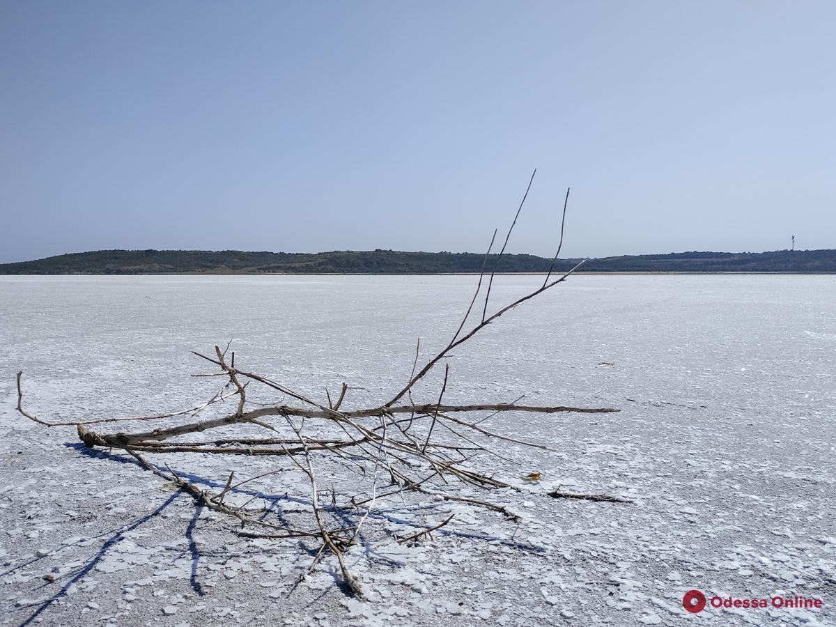 На одесском Куяльнике выпала соль (фото, видео)