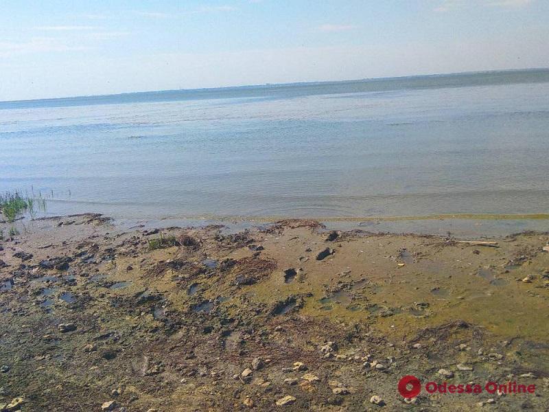 Вышел на плоту и не вернулся: тело пропавшего мальчика нашли возле Аккермана