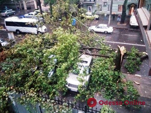Непогода в Одессе: коммунальщики ликвидируют последствия дождя