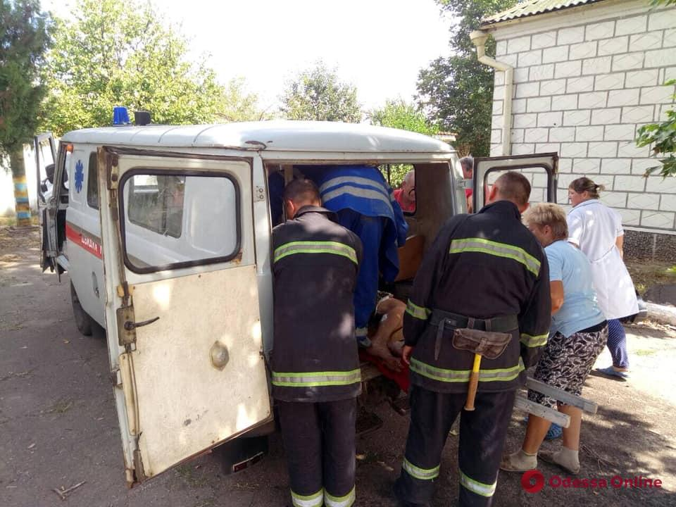В Измаильском районе пенсионерка упала в костер (фото)