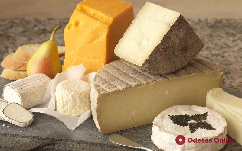 Фестиваль сыра и брынзы пройдет под Одессой